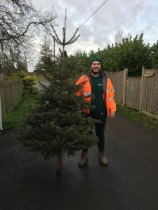 Christmas Tree recycling. Pilgrims Hospices